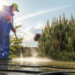 Men Washing Garden Paths